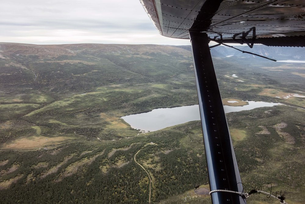 Newfoundland-51.jpg