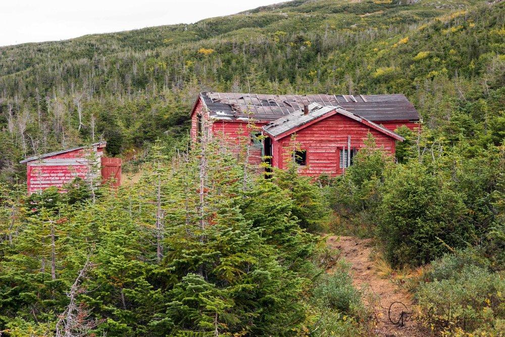 Newfoundland-53.jpg