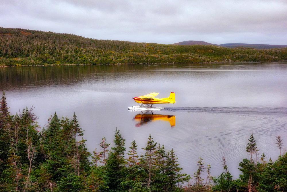 Newfoundland-54.jpg