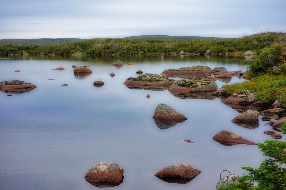 Newfoundland-56.jpg