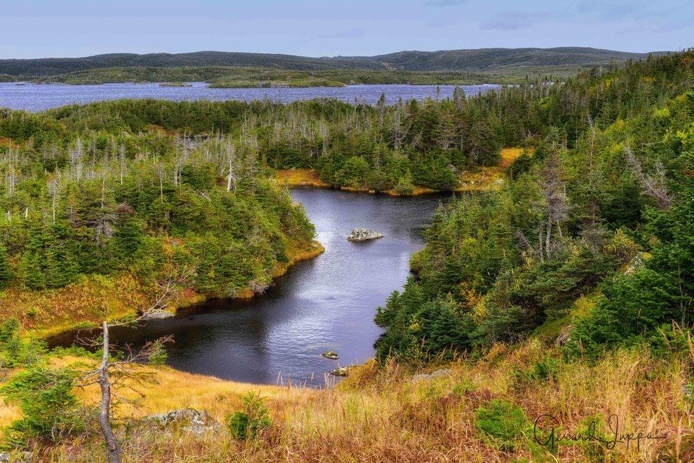 Newfoundland-63.jpg