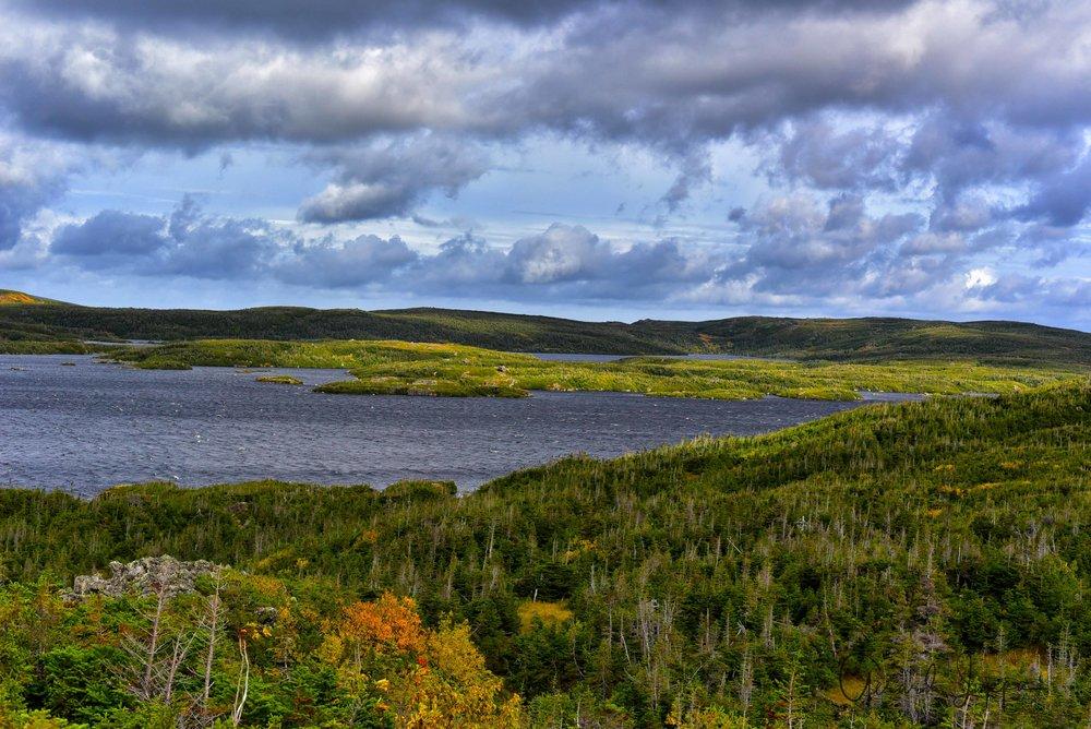 Newfoundland-66.jpg