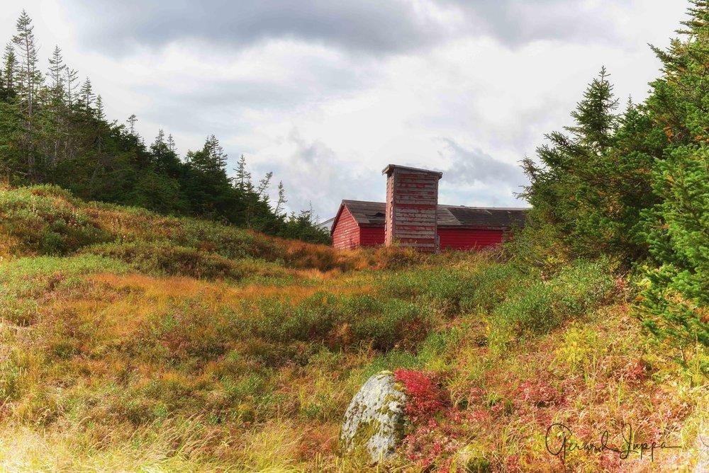Newfoundland-73.jpg
