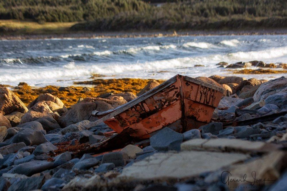 Newfoundland-82.jpg