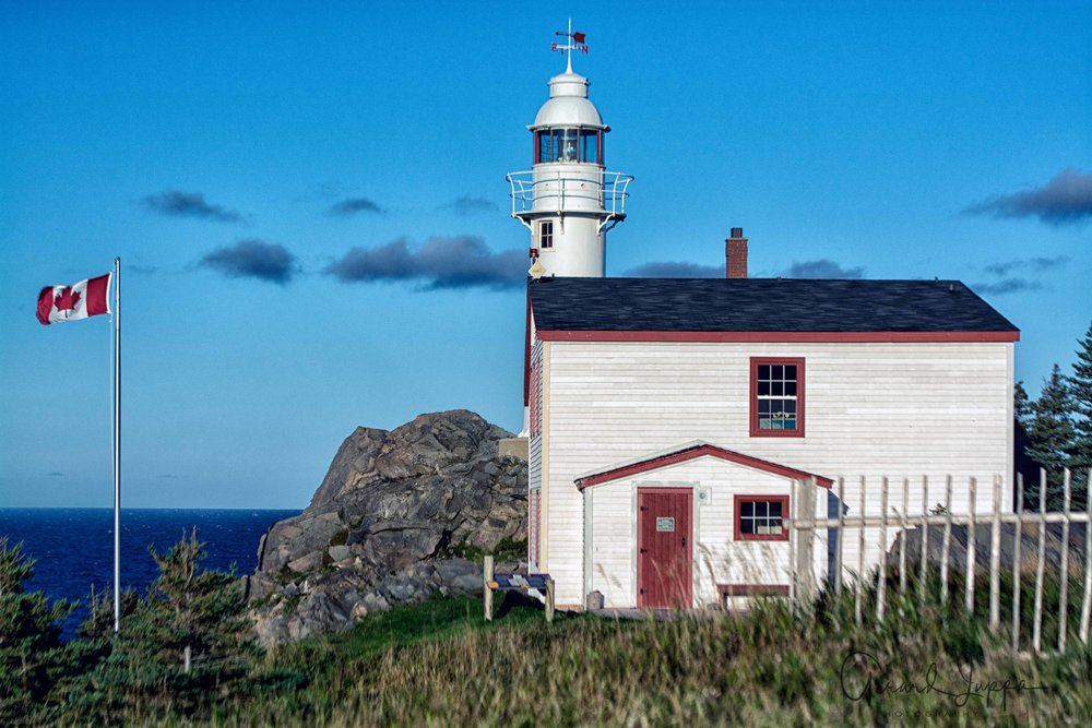 Newfoundland-84.jpg