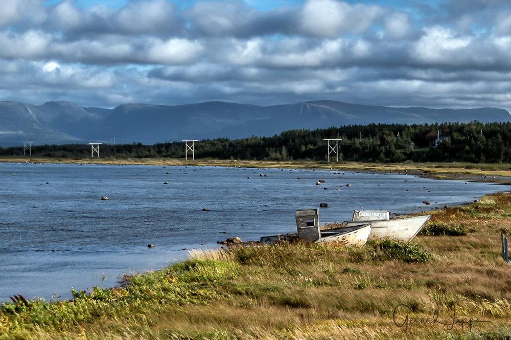 Newfoundland-88.jpg