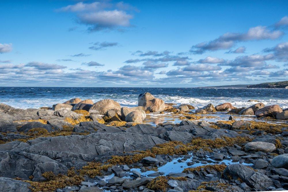 Newfoundland-106.jpg