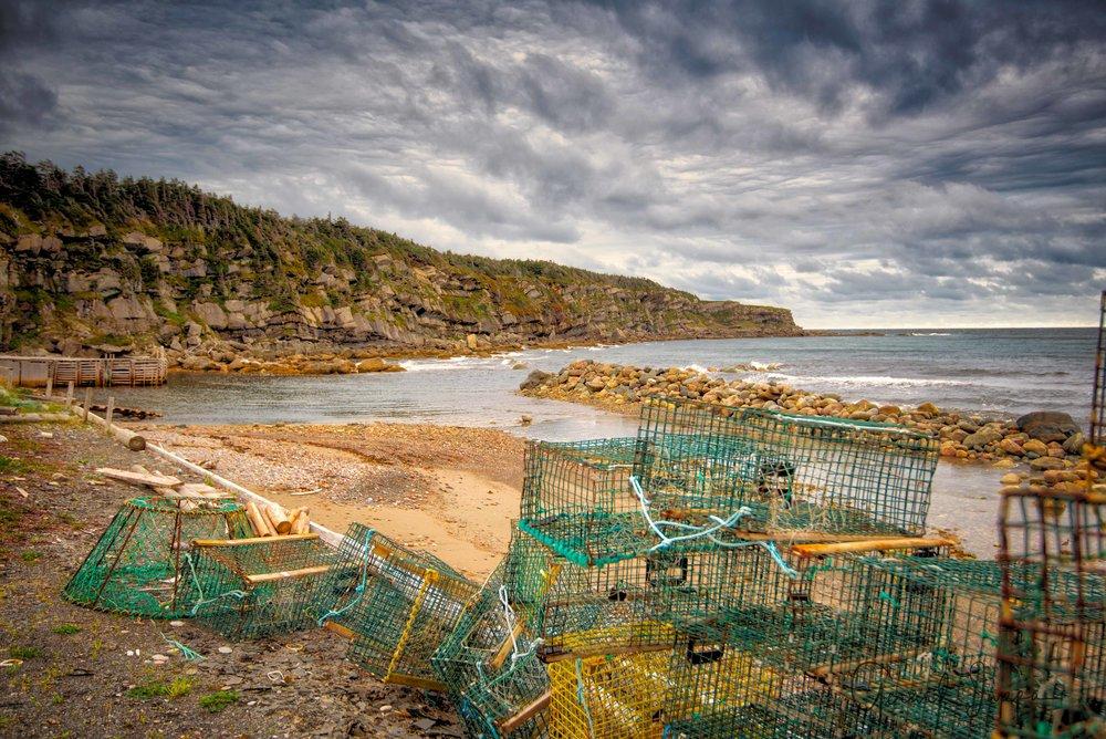 Newfoundland-116.jpg
