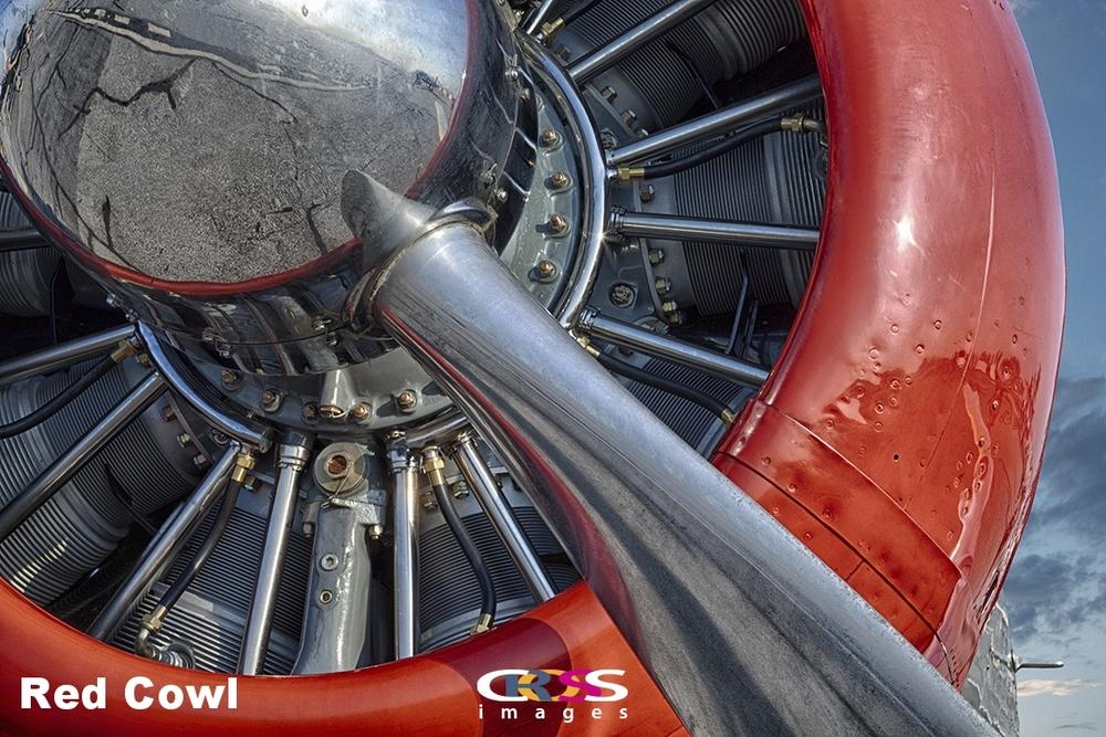 Red Cowl.jpg