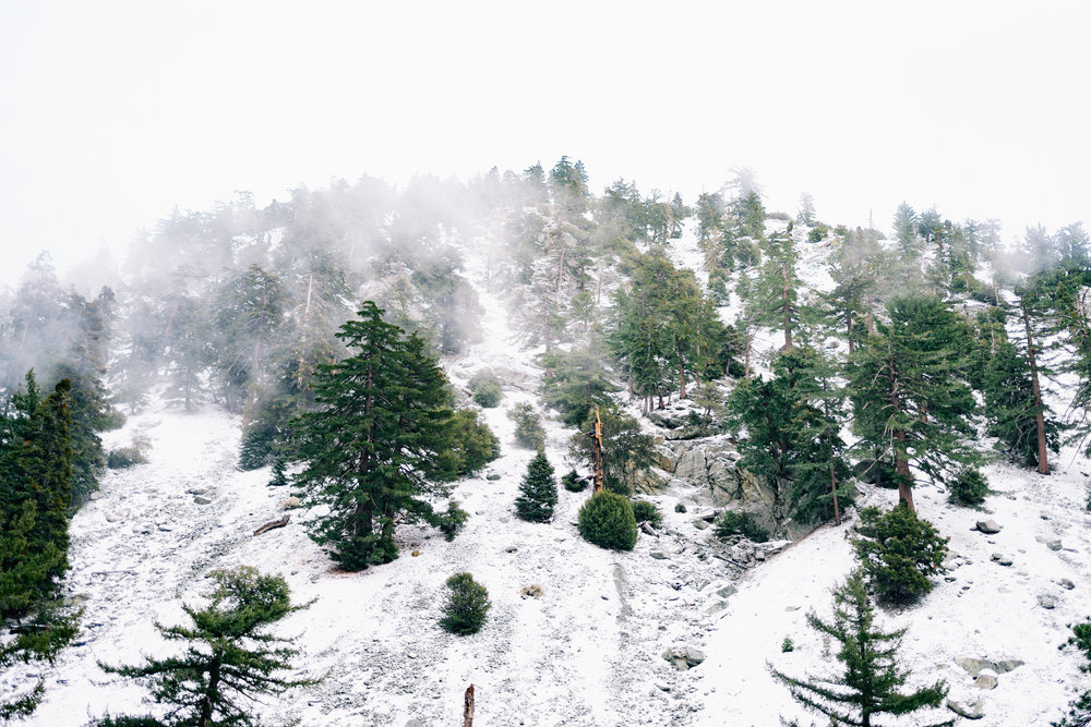 Mount Baldy, CA