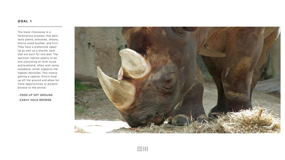 Seyia Project_Black Rhino_Design Options4.png