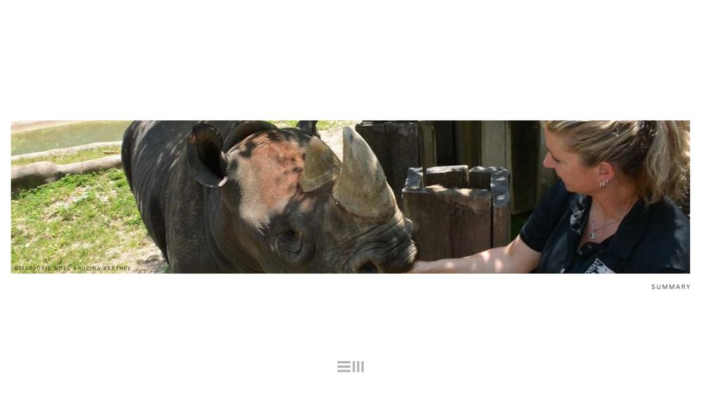 Seyia Project_Black Rhino_Design Options23.png