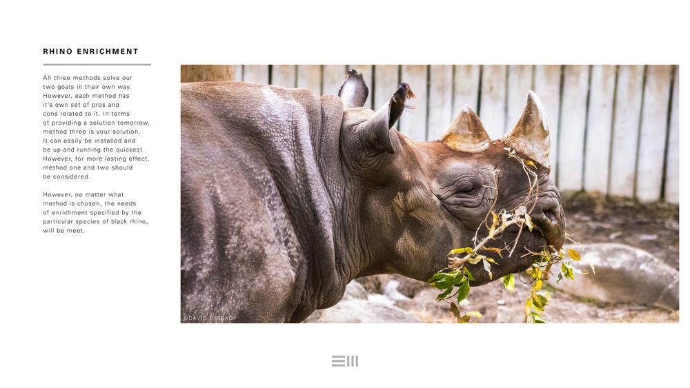 Seyia Project_Black Rhino_Design Options24.png