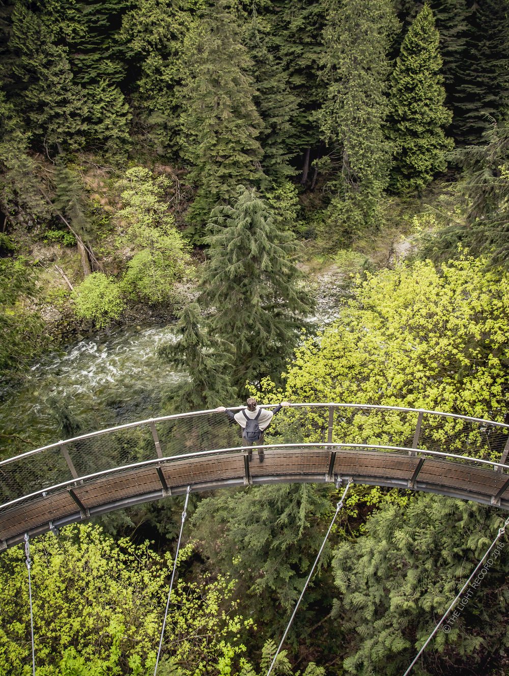 Cliff Walk at Capilano Suspension Bridge Park