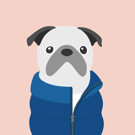 woofmodels-dogsofinstagram-puff-jacket-blue.jpg