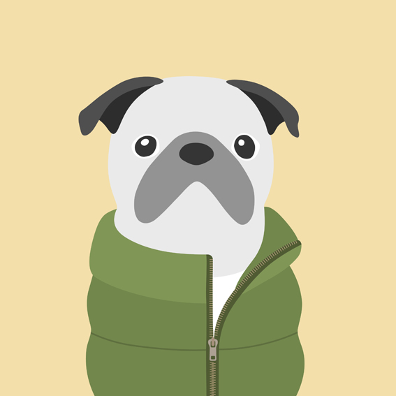 woofmodels-dogsofinstagram-puff-jacket-green.jpg