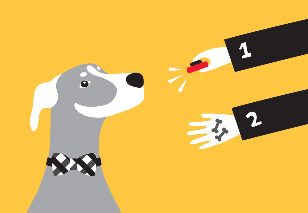 woofmodels-san-francisco-spca-dog-training.jpg