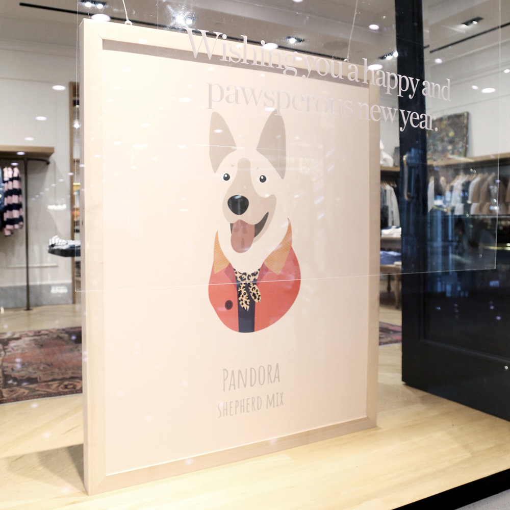 woofmodels-jcrew-pandora-window.jpg