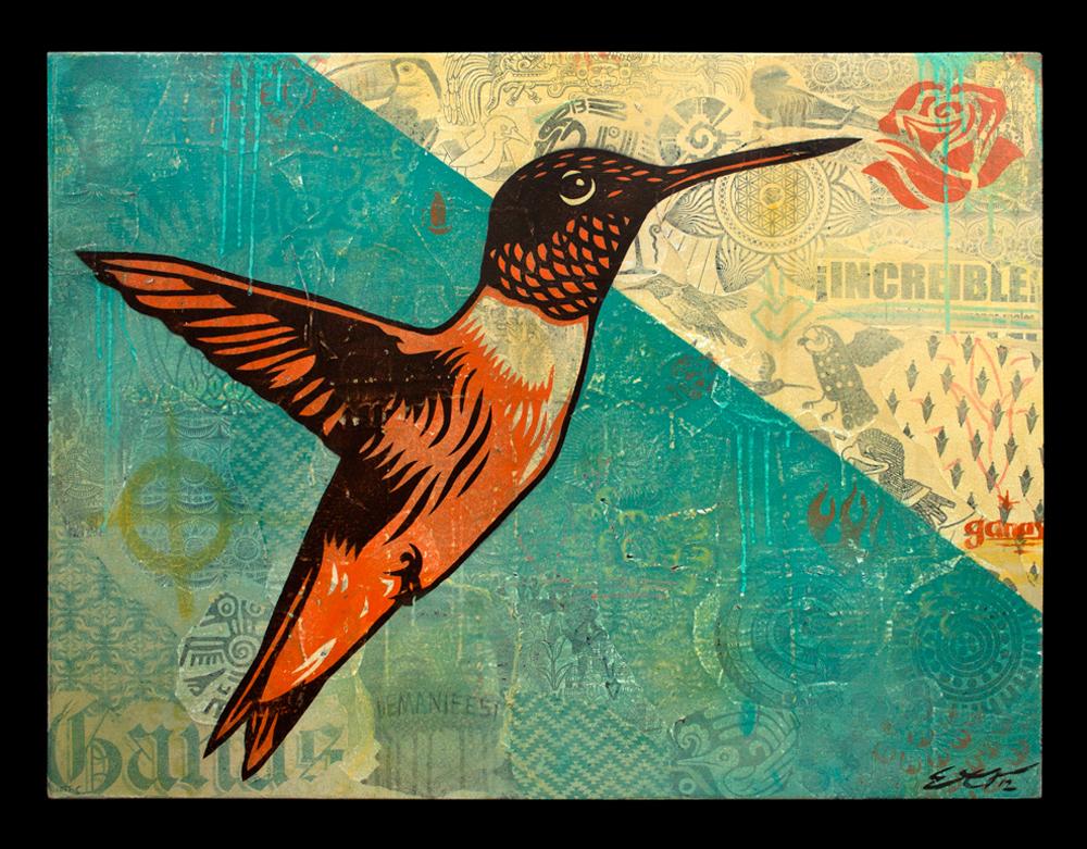 Dignity Colibri