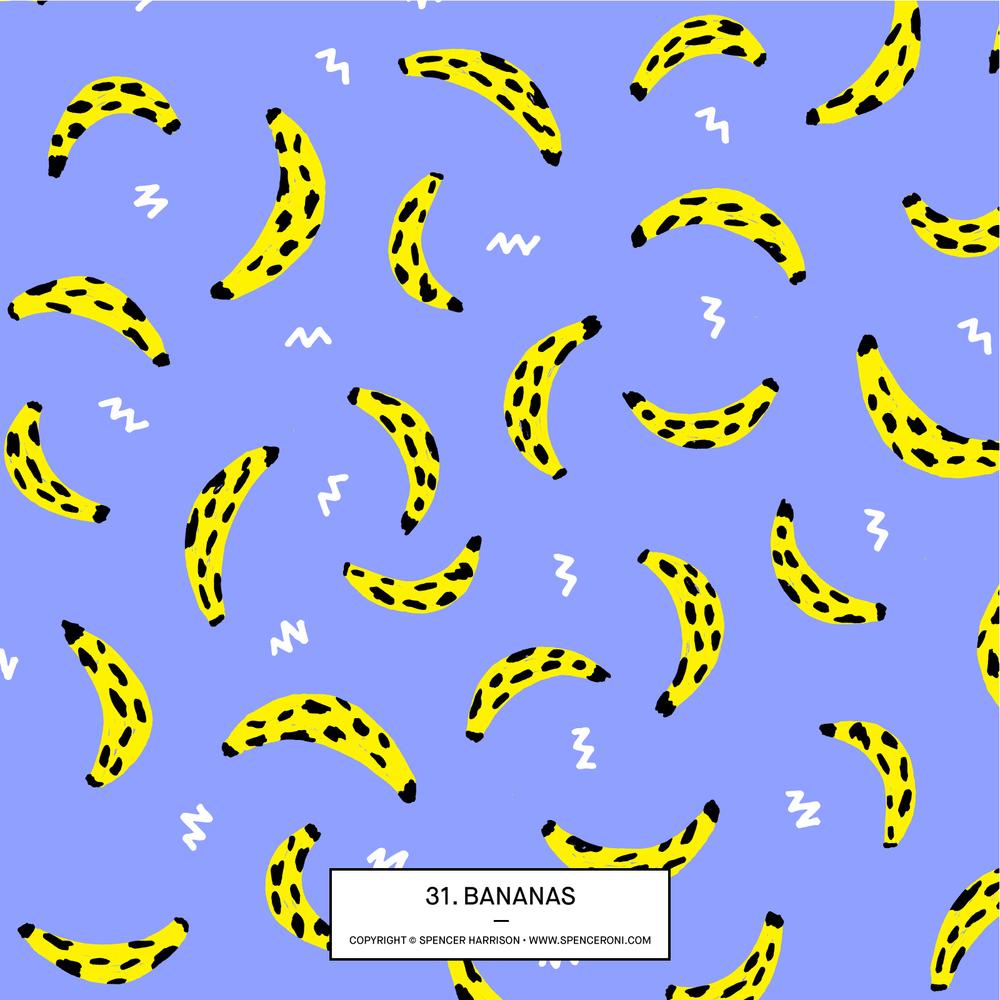 Spenceroni-Pattern-31.jpg