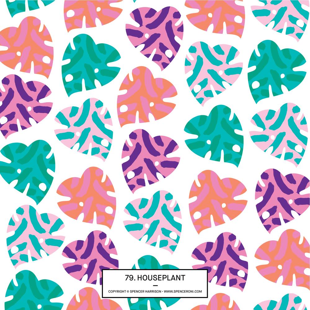 Spenceroni-Pattern-79.jpg