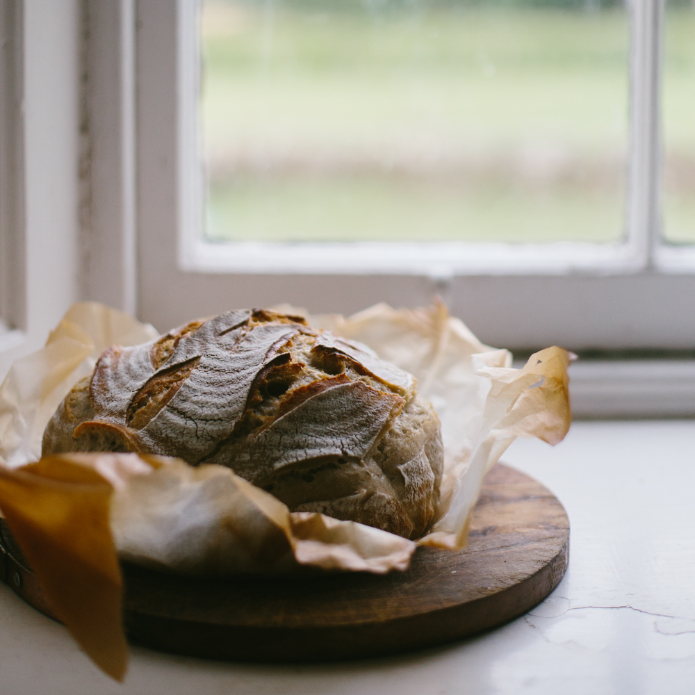 Everyday Sourdough: The Online Course -
