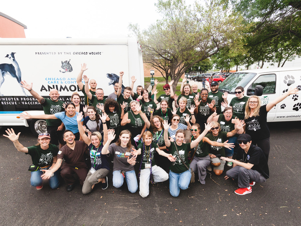 NBC's 2nd Annual Clear the Shelters Event