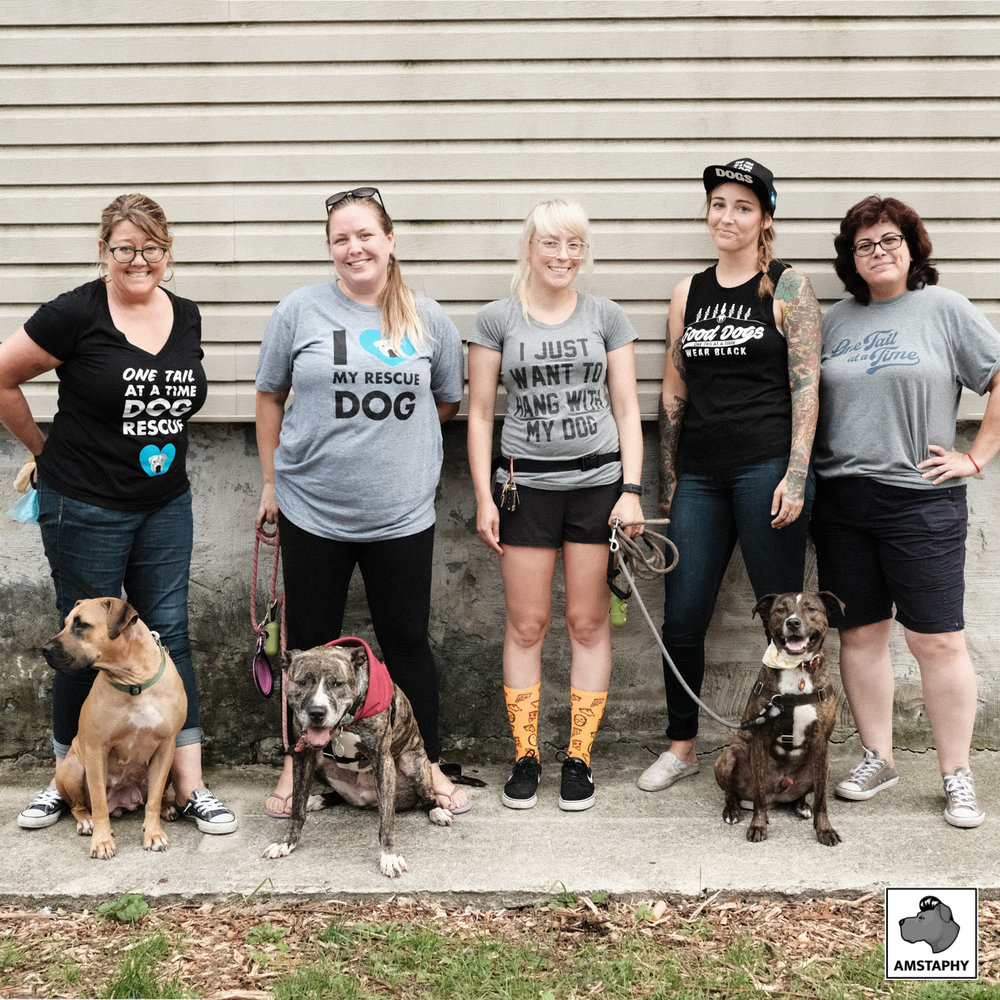 Mothers Against Senseless Killings and One Tail at a Time Rescue | AMSTAPHY