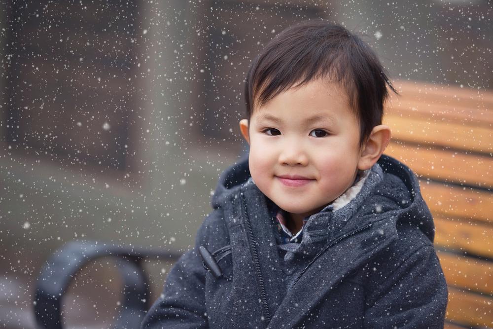 vien016_snow.jpg