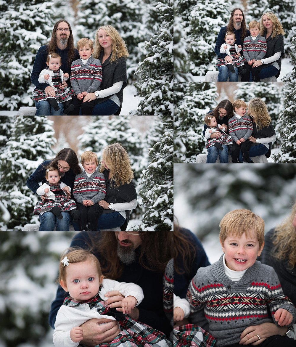 festive family portraits