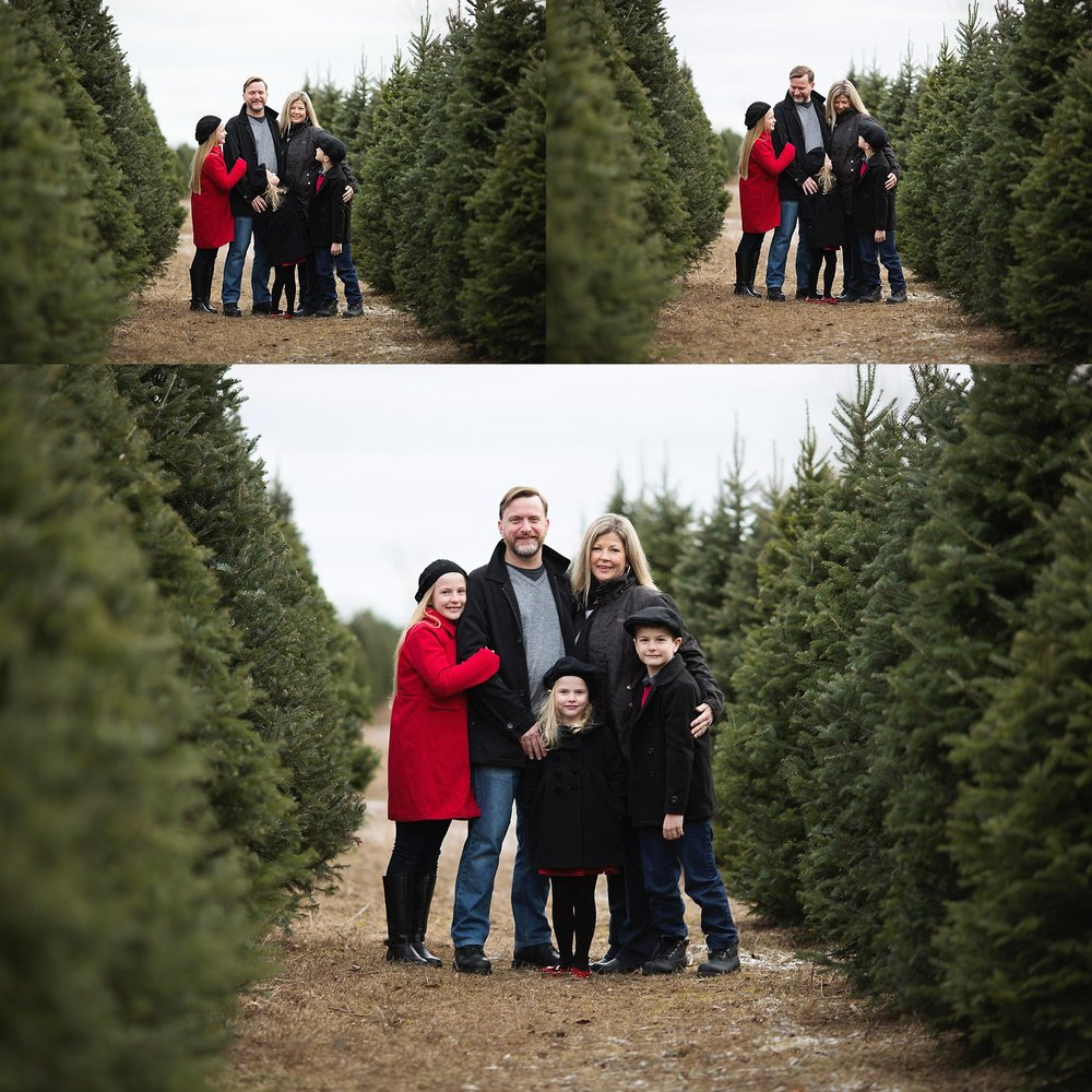 family portraits tree farm ottawa