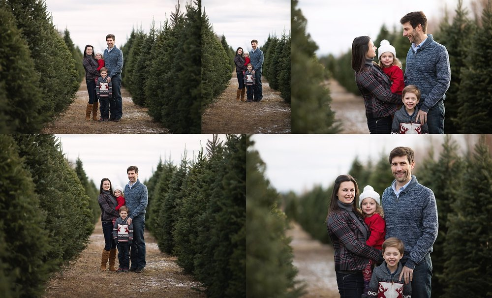 family portraits tree farm