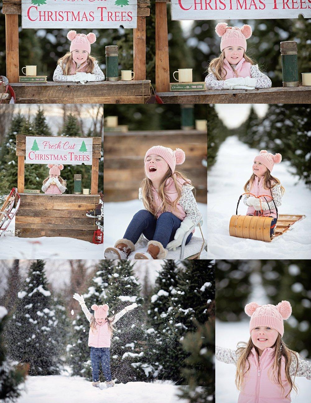 Christmas Photos Ottawa