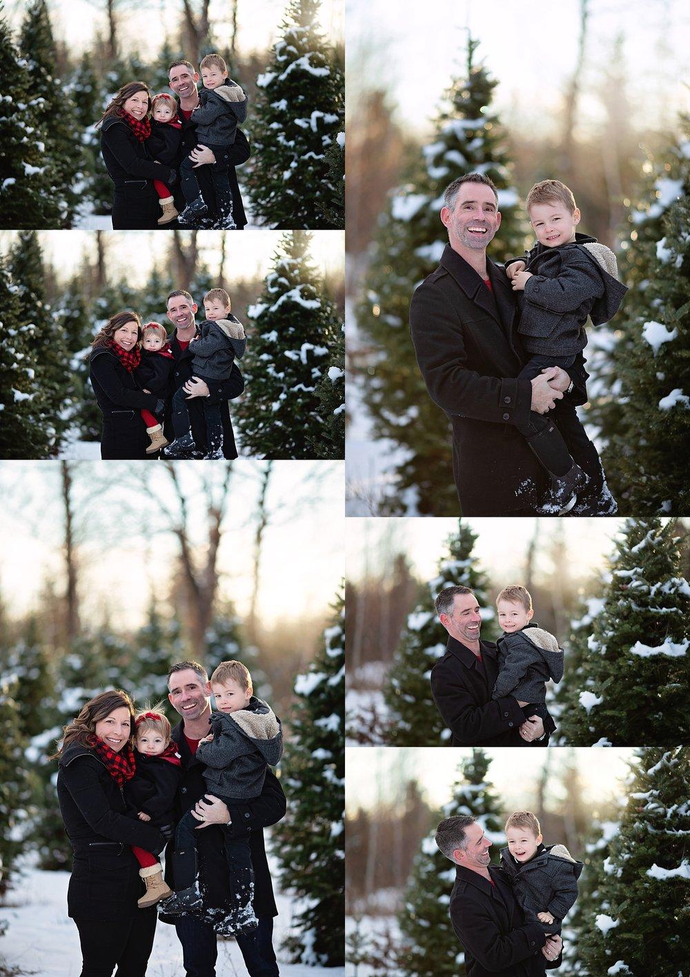 Tree Farm Family Portraits Ottawa