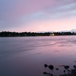 Summer sunsets along the Rhine. #rhine #bonn