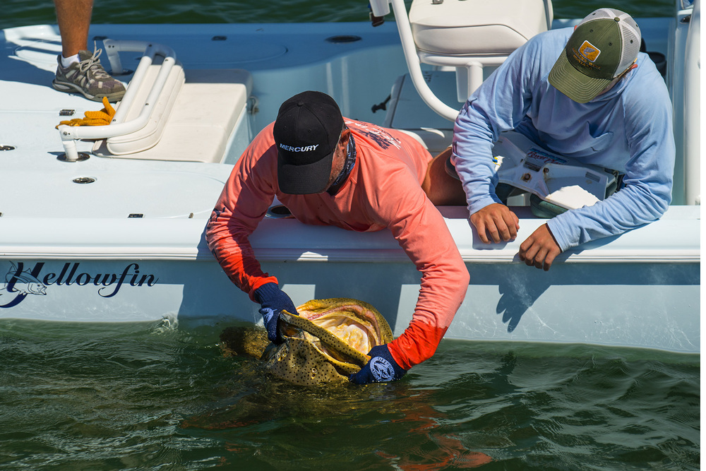 Hayden gets a HUGE Goliath Grouper!
