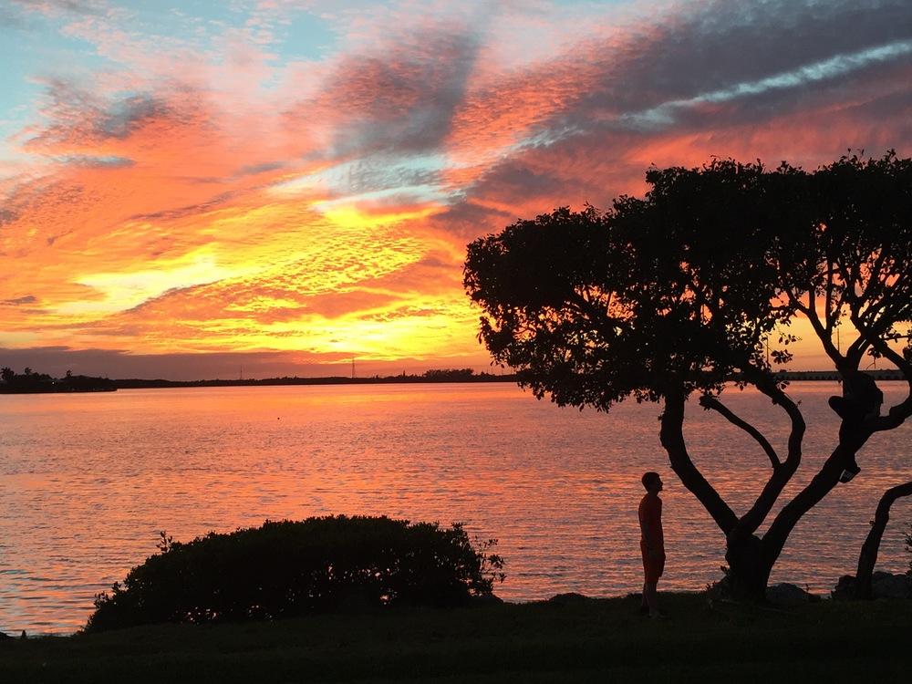 nice sunset with 2 brothers climbing a tree. Hawks Cay Resort. Florida Keys