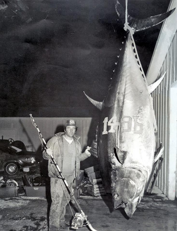Bluefin_Tuna_World_Record_1,496_lbs.jpg