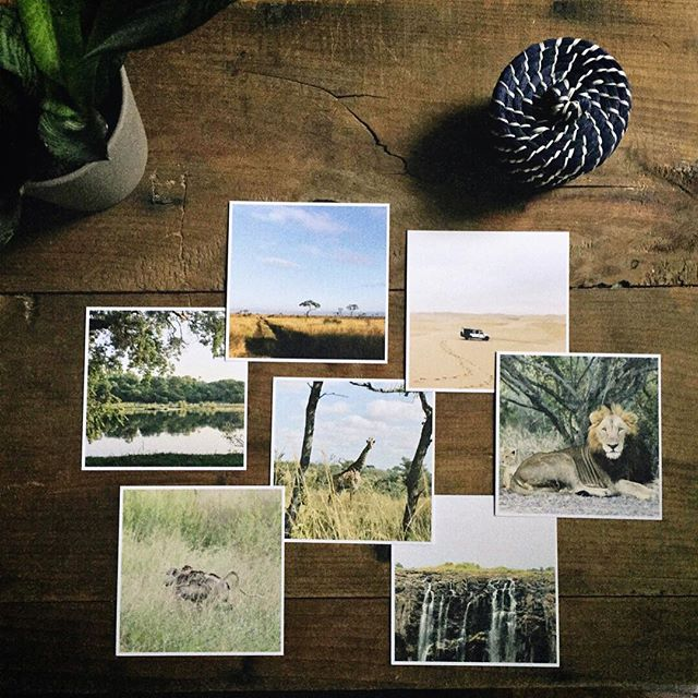 Breathing new life into old memories 〰 Thanks for the prints @artifactuprising #tellon