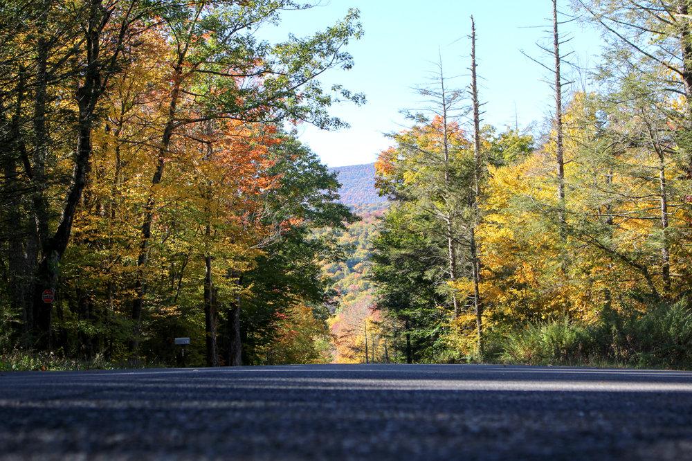 woodstock new york weekend getaway-5394.jpg