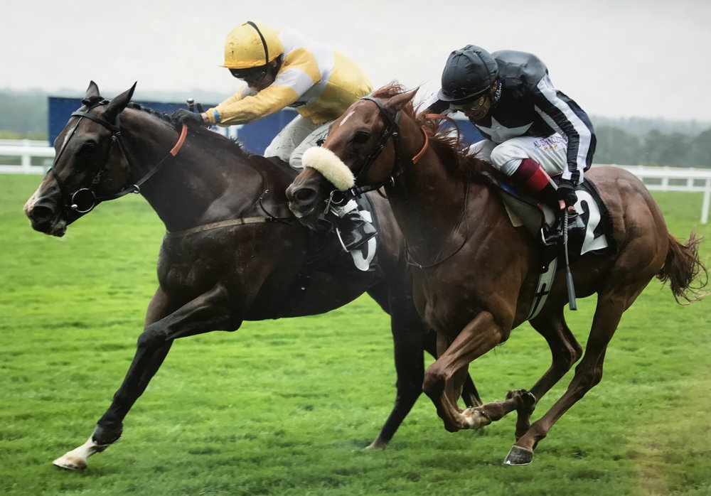 Raydiance winning the Wooldridge Group Pat Eddery Listed Stakes at Ascot