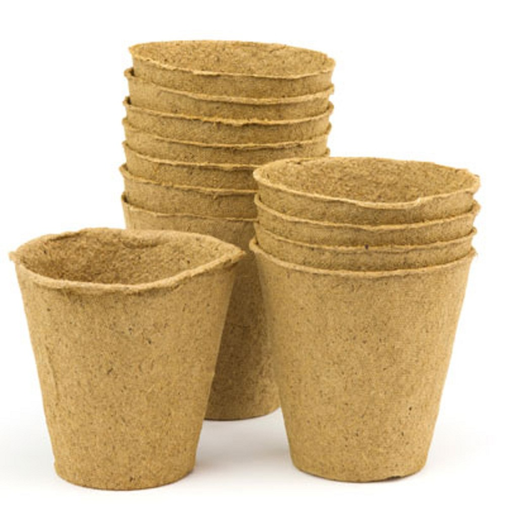 Plant pots   Single pot  20 Credits