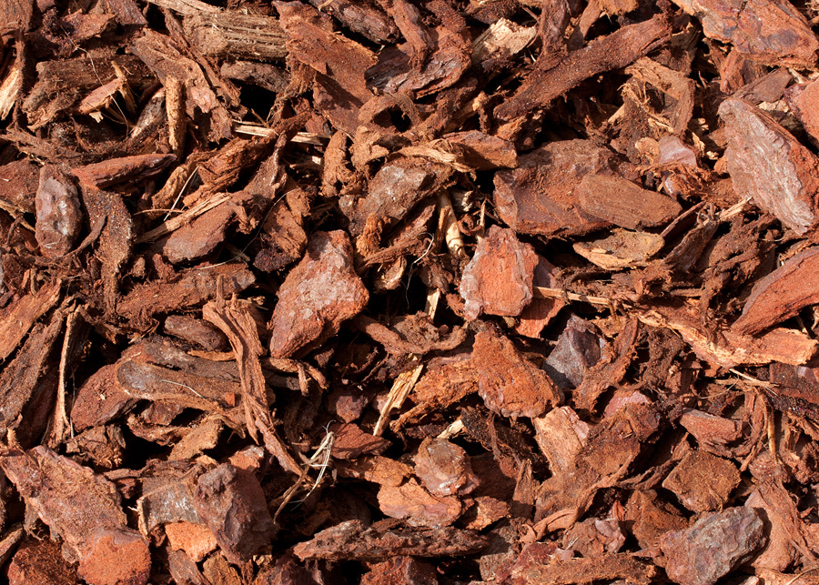 Bark chippings   Small bag  60 Credits
