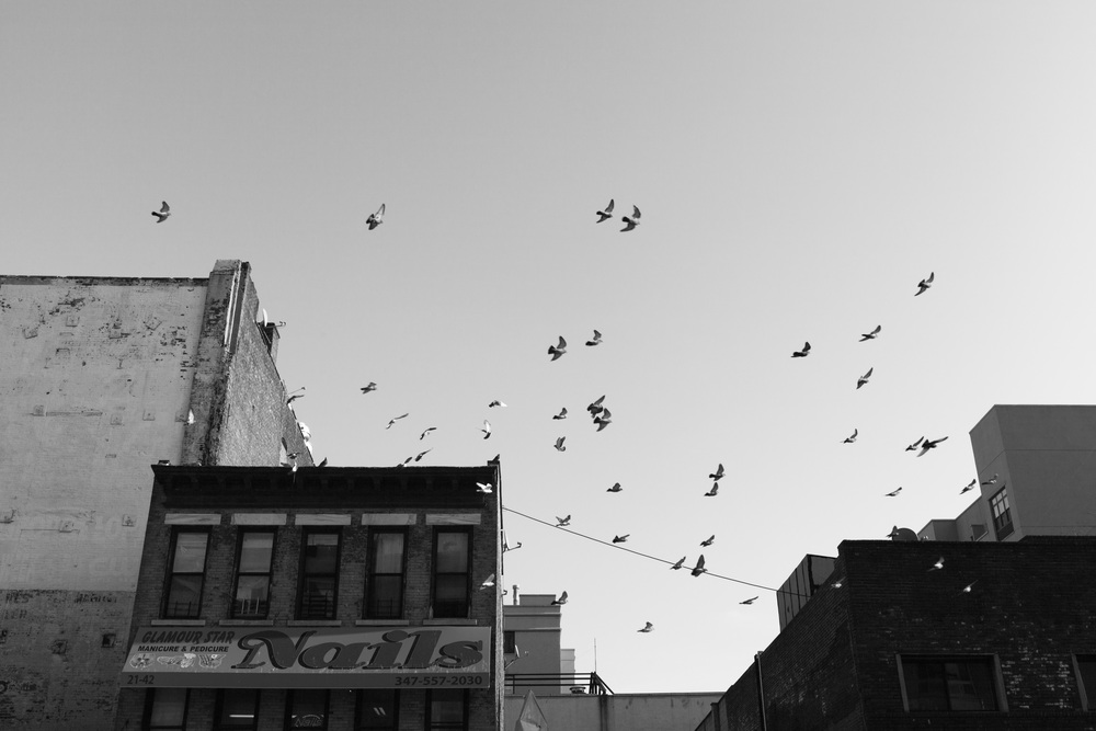 NEW YORK-1-23.jpg