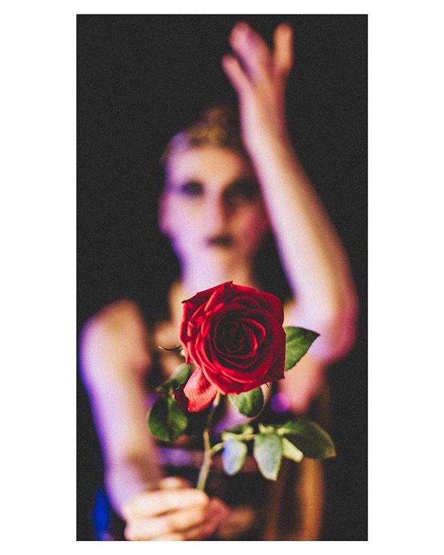 Story Development for next EWC production 🌹⚜️🌿 . WARN::⚠️❌ 𝔇𝔬𝔫'𝔱 𝔰𝔪𝔢𝔩𝔩 𝔱𝔥𝔢 𝔣𝔩𝔬𝔴𝔢𝔯𝔰 ❌⚠️ . . 𝒟𝒶𝓃𝒸𝑒𝓇: @megancdillon ⚡️ . . . . . 𝒫𝒽𝑜𝓉𝑜 𝒷𝓎: @heartfulaffairs ✨ . . . . . . . . #rose #desire #dance #dancetheatre #storytelling #immersivetheater #immersivestorytelling #dancer #dancersofinstagram #artistsoninstagram