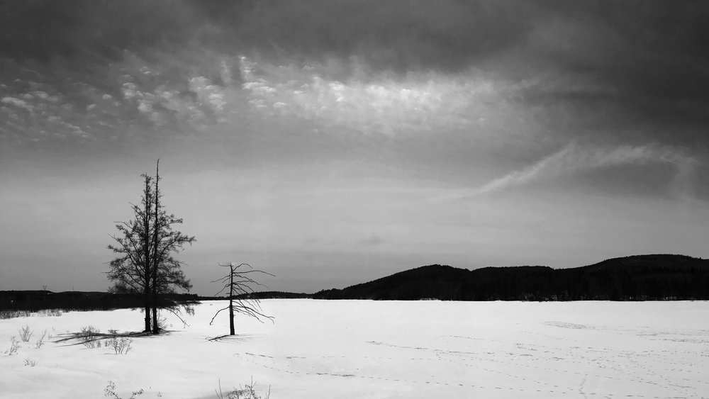 Winter landscape, Stoneham et Tewksbury, March 2017