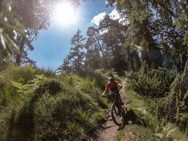 Dry and dusty trails the whole day. And the sun was relentless. 🔥 ... More info soon on @ridebikester ... Thanks a lot for the tickets @flims_switzerland 👍 ... #mountainbike #freeride #mtb #singletrail #outdoor #goprohero6 #mtbnation #mtblife #enduromtb #plantbasedathlete #MountainBiking #mtblove #instamtb #lifebehindbars #mtbswitzerland #enduro #mountainbikinglife #flowtrail #lifeofadventure #liveoutdoors #makemoments #simplyadventure #bikemagazin #adventuretillwedie #welivetoexplore #neverstopexploring #flims #runcatrail