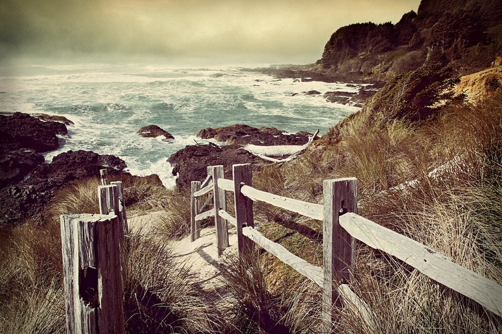 coast fencesnap1.jpg