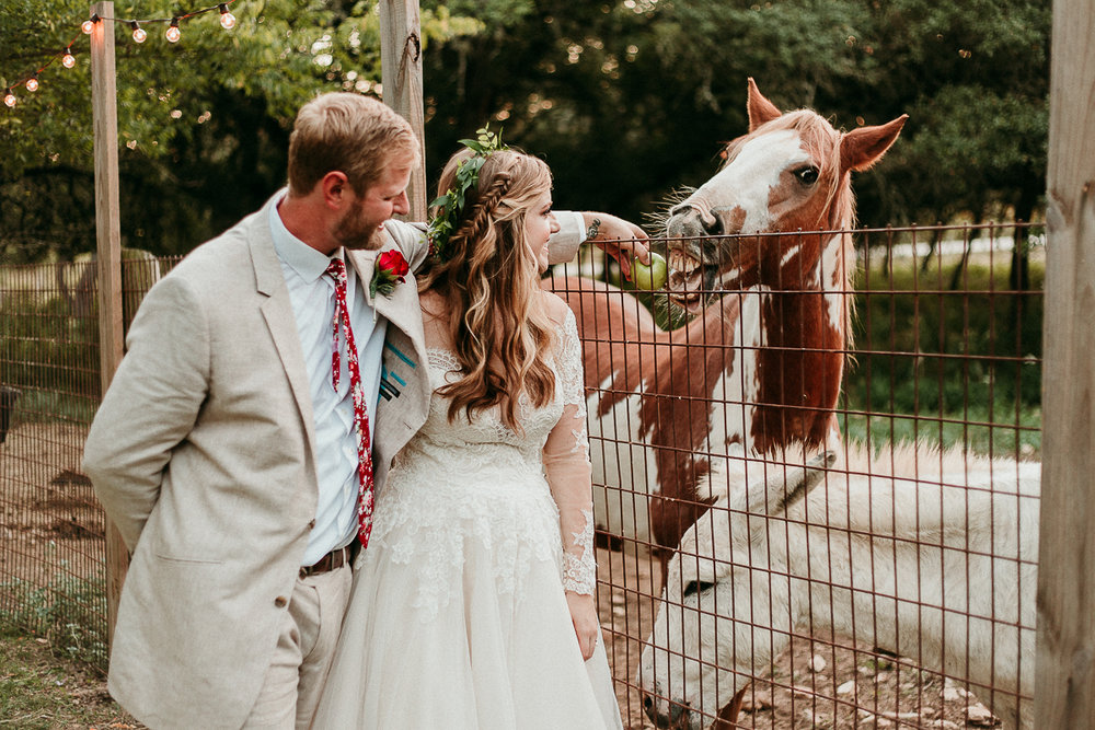 alexandra-white-photo-horses-wedding-photographer-inn-wild-rose-hall