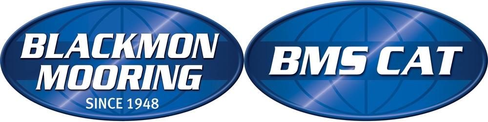 BMSLogo-Cobranded large.jpg